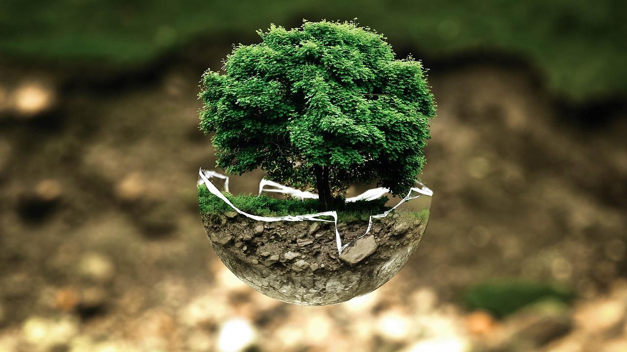 Jakość korzystna dla środowiska